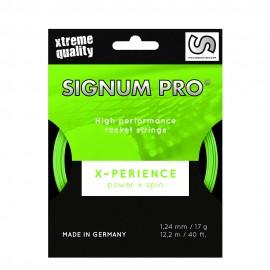 Signum Pro X-Perience 1.24 - 12M - Verde